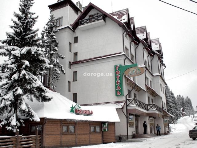 Гостиница Горганы